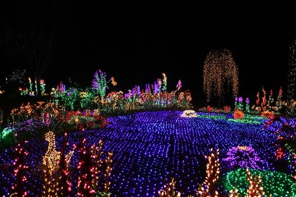 Garden D'Lights 2012