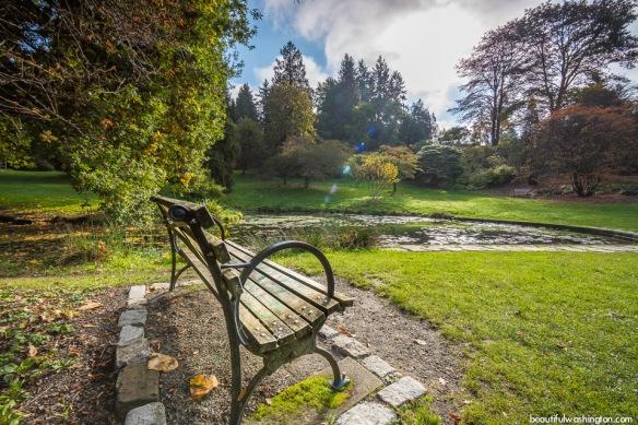 washington-park-arboretum-31