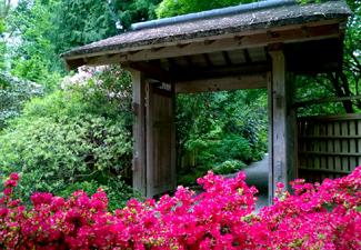 bellevue-botanical-garden