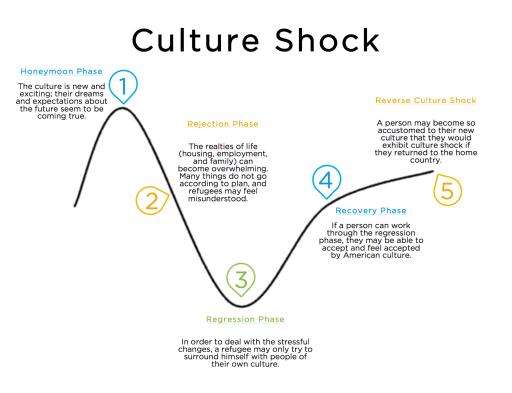 Culture Shock Diagram_1_0.png
