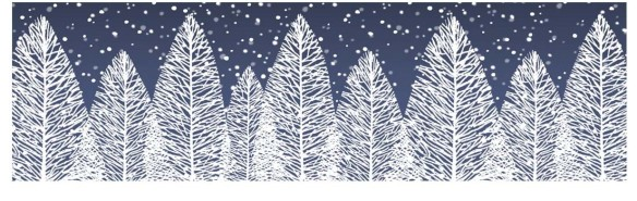 cropped-blue-winter-tree-banner-.jpg